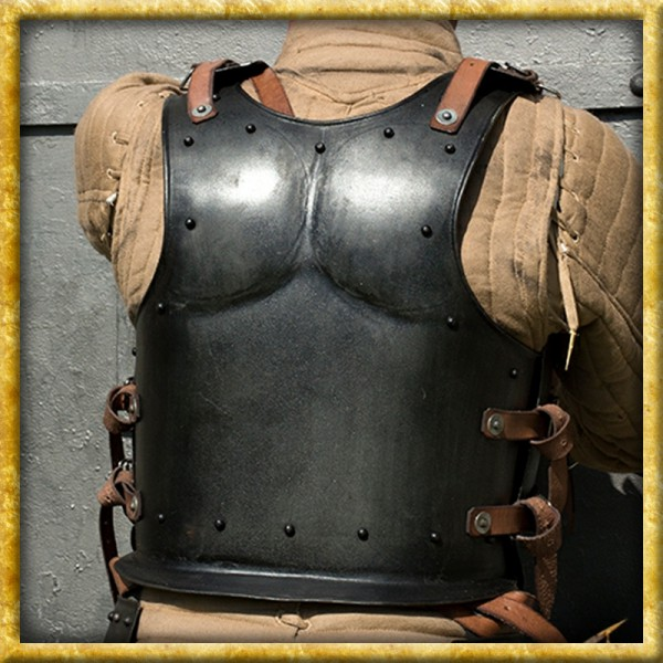 Rückenpanzer - Dark Drake
