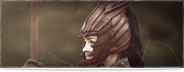 Lederhelme | Waffenmeister